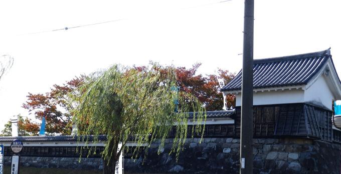 長岡京市のガラシャ祭 リラクゼーションスクール(ボディケア・足つぼ・リンパ・整体)講師の趣味休日